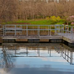 Lake House Dock
